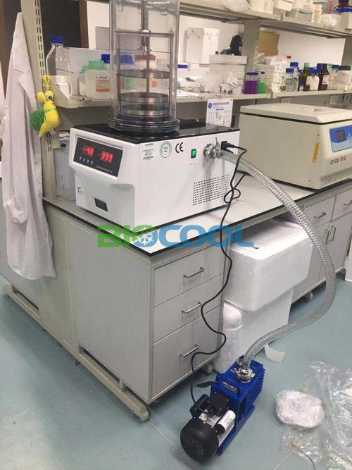 赛尔富森生物科技采购博医康FD-1B-50冻干机3